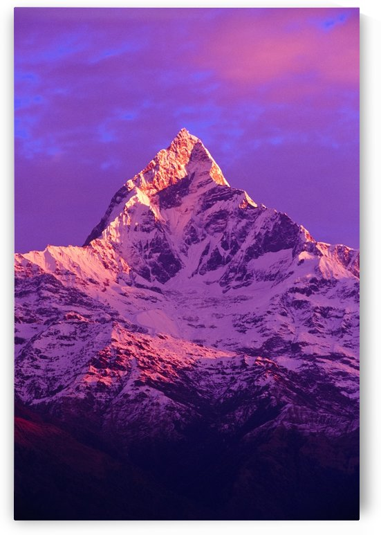 View Of Machhapuchhare At Sunrise From Sarangkot, Annapurna Region, Nepal by PacificStock