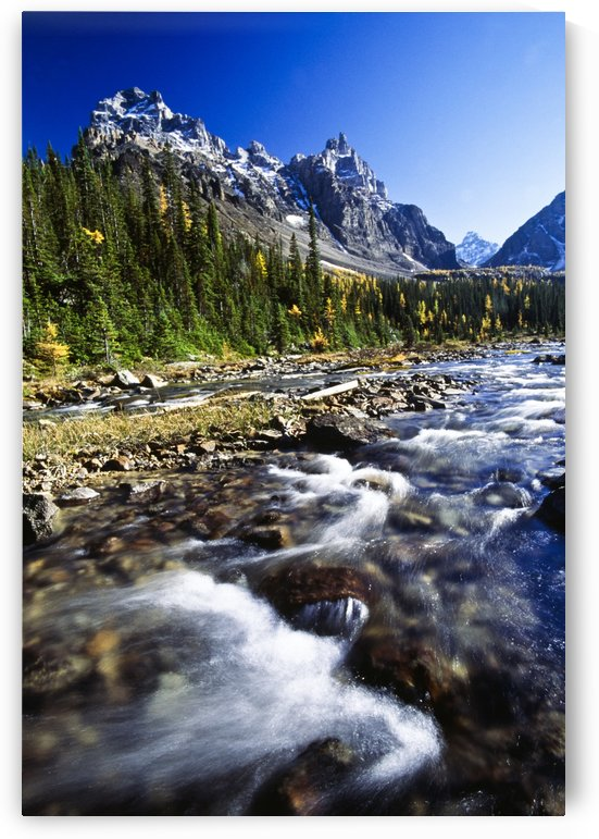 Paradise Valley, Banff National Park, Alberta, Canada by PacificStock