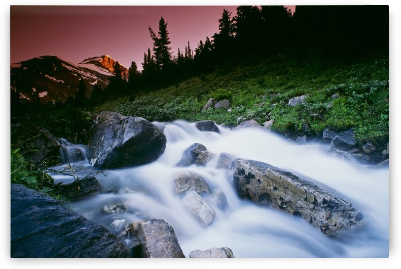 Small Stream, Skoki Valley, Banff National Park, Alberta, Canada by PacificStock