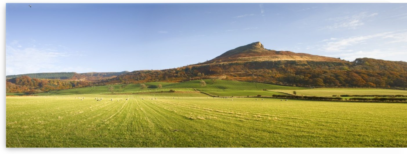 Roseberry Topping Hill, North York Moors, England by PacificStock