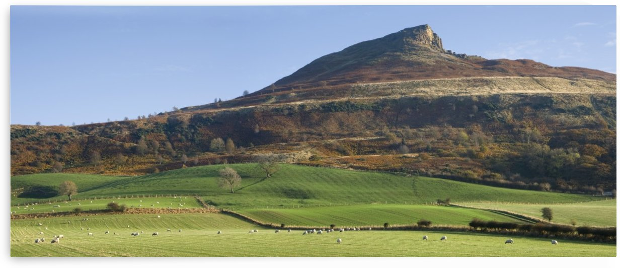 Roseberry Topping Hill, Yorkshire, England by PacificStock