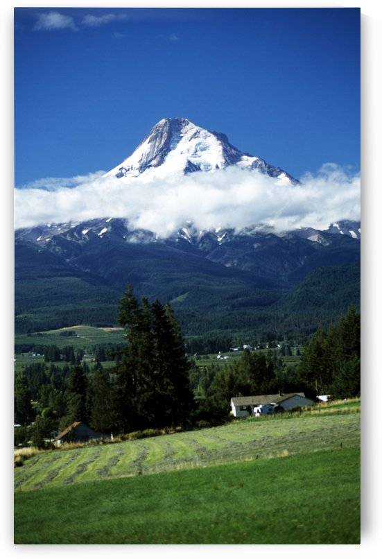 Oregon, Usa; Mount Hood And Low Lying Cloud by PacificStock