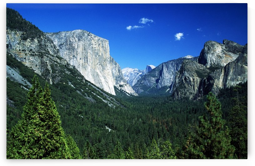 Yosemite National Park, Sierra Nevada, California, Usa; Forest And Mountains by PacificStock