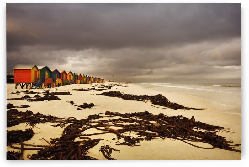 Changing Huts Along The Beach, Cape Town, South Africa by PacificStock