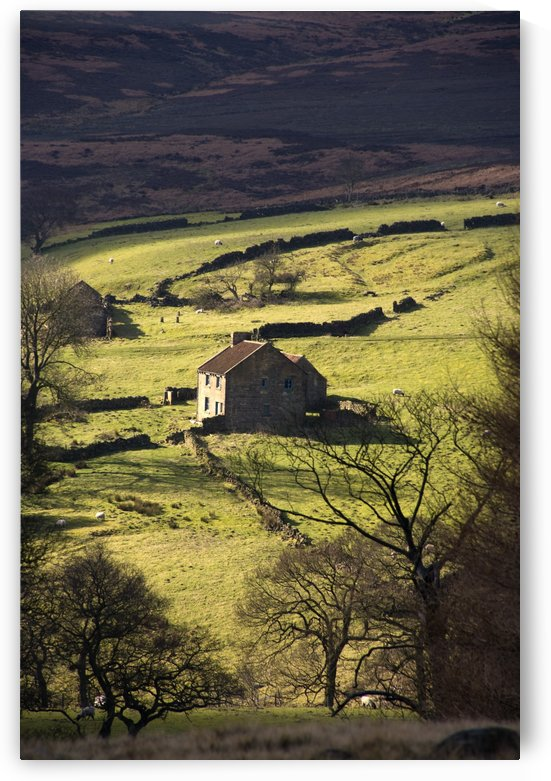 House In Countryside, North York Moors, North Yorkshire, England by PacificStock