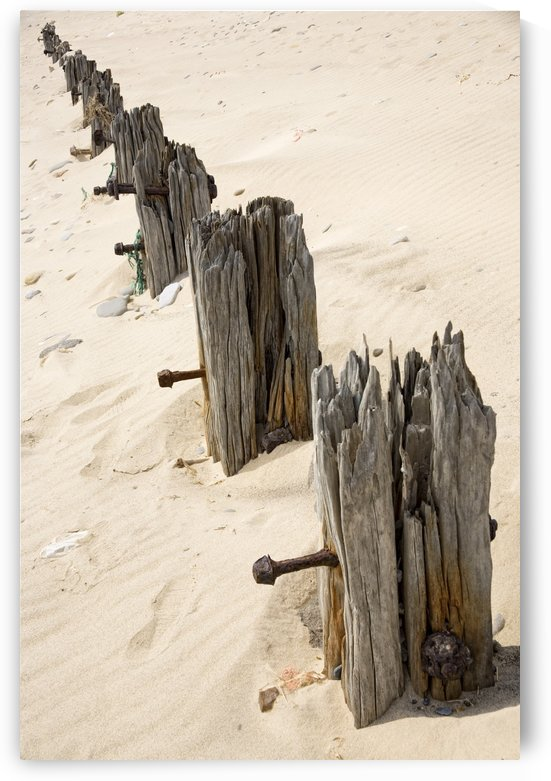 Posts In Sand by PacificStock