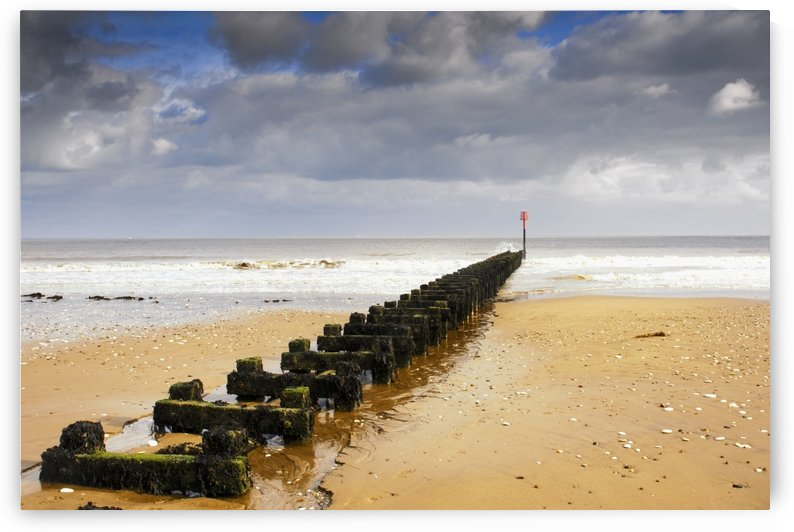 Jetty On Beach, Yorkshire, England by PacificStock
