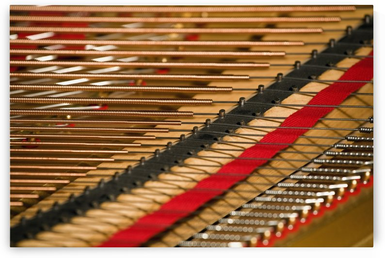 Close Up Of Piano Strings by PacificStock