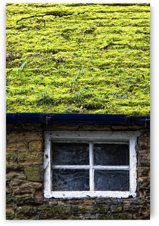Cottage With Grass Growing On Roof by PacificStock
