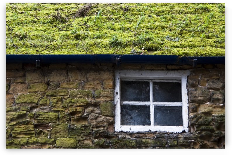 Cottage With Grassy Roof by PacificStock