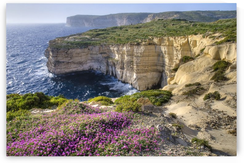 Cliffs Along Ocean With Wildflowers by PacificStock