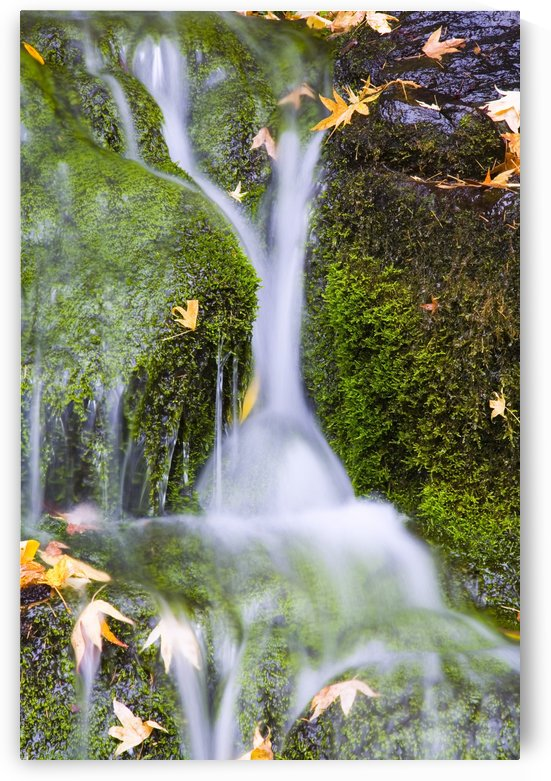 Crystal Springs Waterfall At Oregon, United States Of America by PacificStock