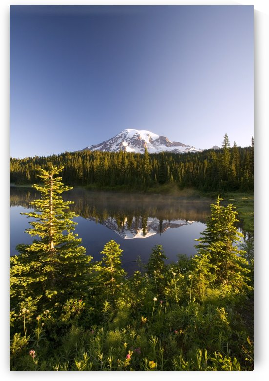Lake And Mount Rainier, Mount Rainier National Park, Washington State, Usa by PacificStock