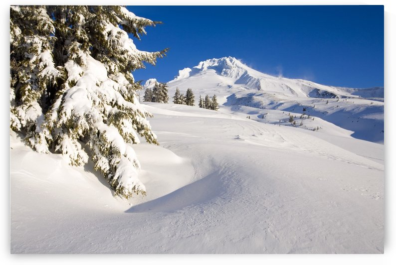 Mount Hood, Oregon, United States Of America by PacificStock