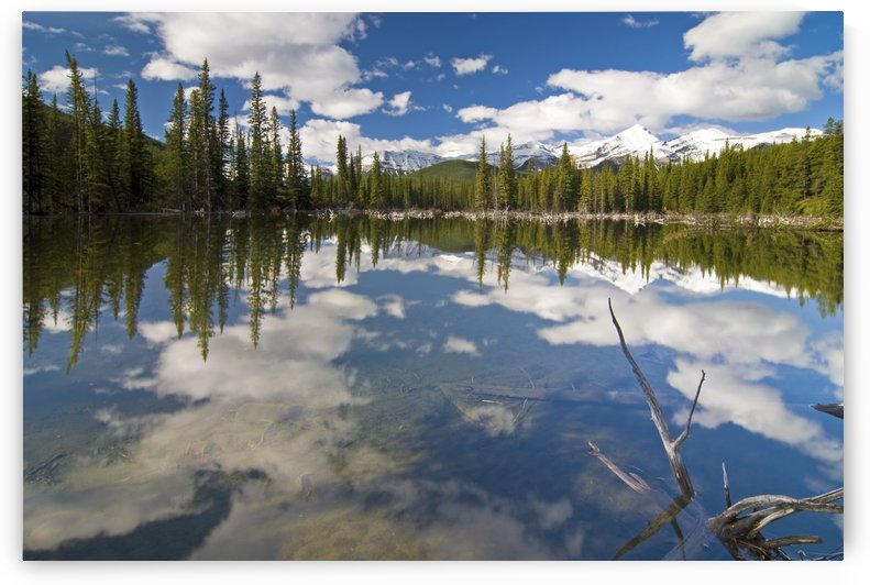 Reflection In Water, Kananaskis, Alberta by PacificStock