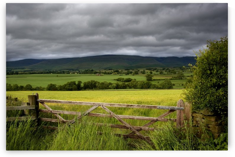 Field, Cumbria, England by PacificStock