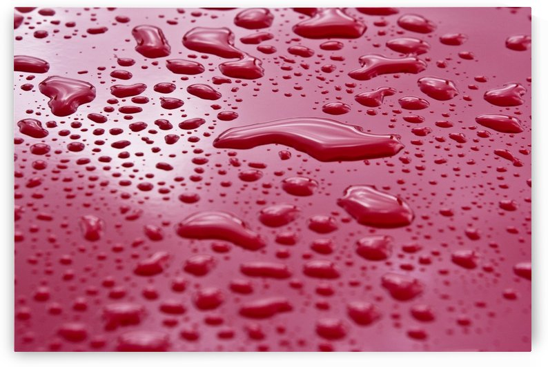 Liquid Drops On Red Surface by PacificStock