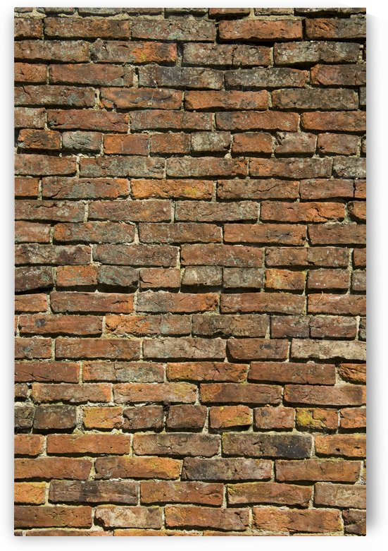 Weathered Brick Wall by PacificStock