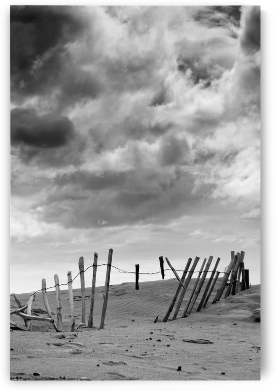 Broken Fence In Dune, South Shields, Tyne And Wear, England, Europe by PacificStock
