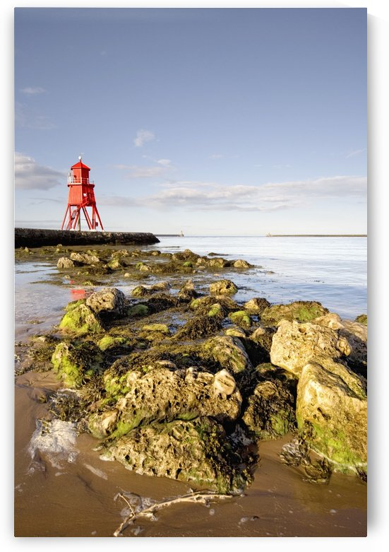 Herd Groyne Lighthouse, South Shields, Tyne And Wear, England by PacificStock