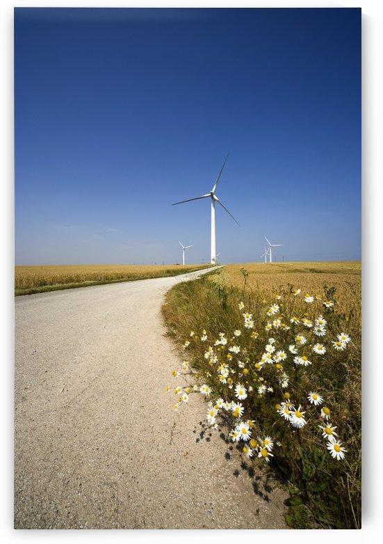 Wind Turbine, Humberside, England by PacificStock