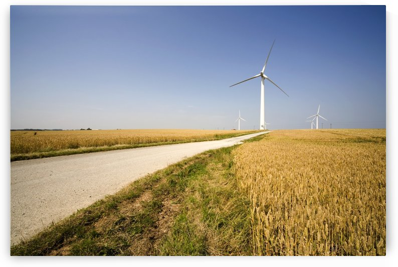 Wind Turbine, Humberside, England by PacificStock