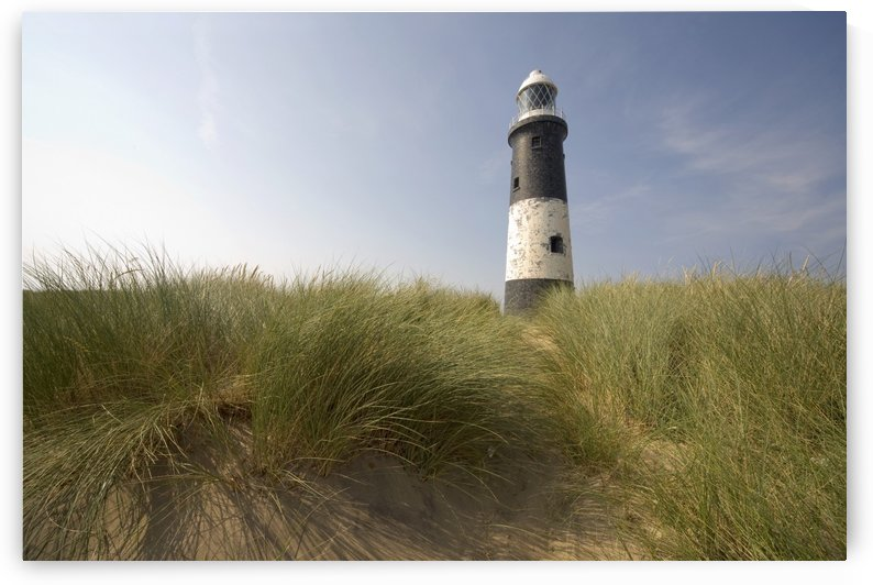Lighthouse In The Dunes by PacificStock