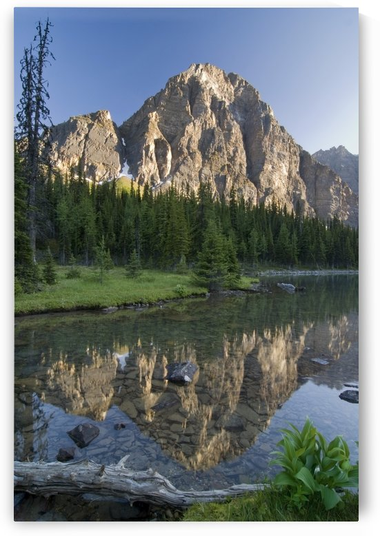 Taylor Lake, Banff National Park, Alberta, Canada by PacificStock