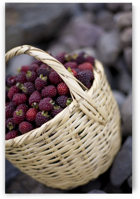 Blackberries In A Basket by PacificStock