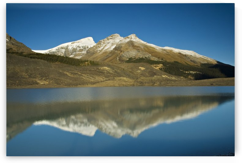 Sunwapta Lake, Jasper National Park, Alberta, Canada by PacificStock