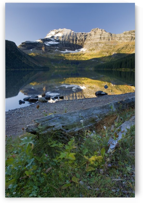 Cameron Lake, Alberta, Canada by PacificStock