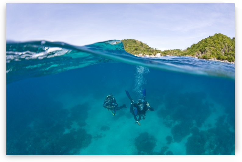 Apo Island Marine Park Negros Oriental Island Philippines Southeast Asia; Scuba Divers by PacificStock