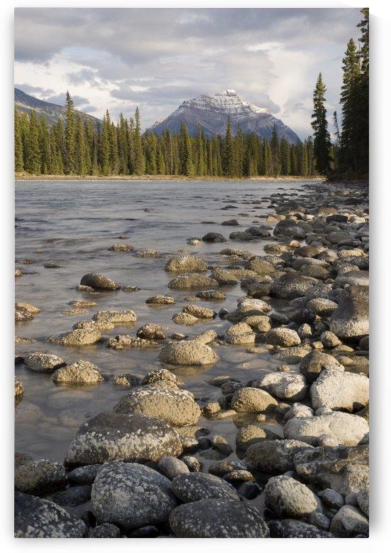 Mount Kerkeslin, Jasper, Alberta, Canada by PacificStock