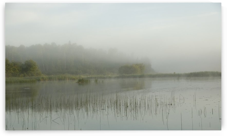 Lake Of The Woods, Ontario, Canada; View Across Lake At Sunrise by PacificStock