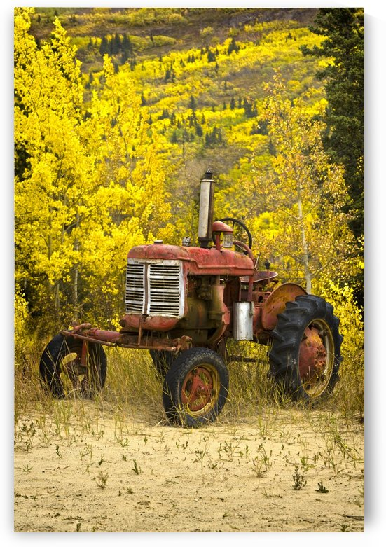 Old Farm Tractor by PacificStock