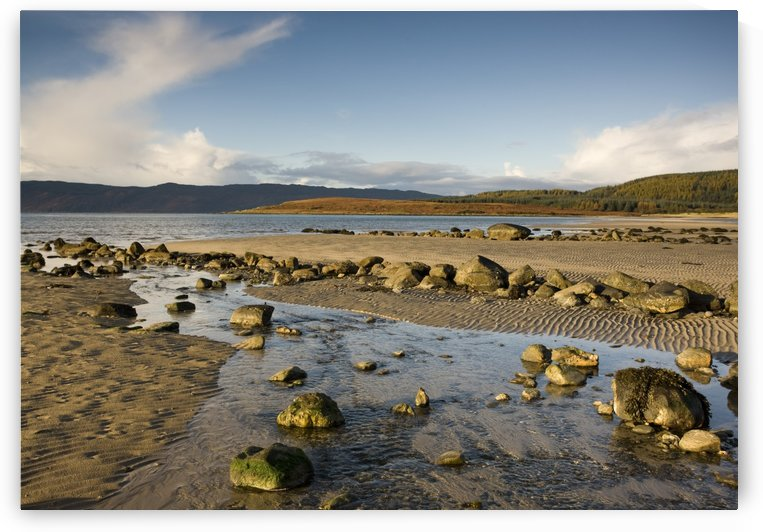 Rocky Beach, Argyll And Bute, Scotland by PacificStock