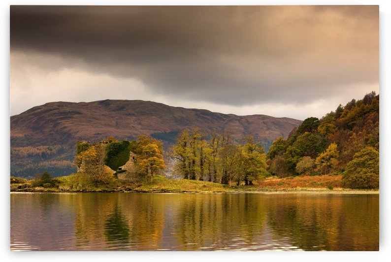 Shoreline With Fall Colors, Argyll And Bute, Scotland by PacificStock