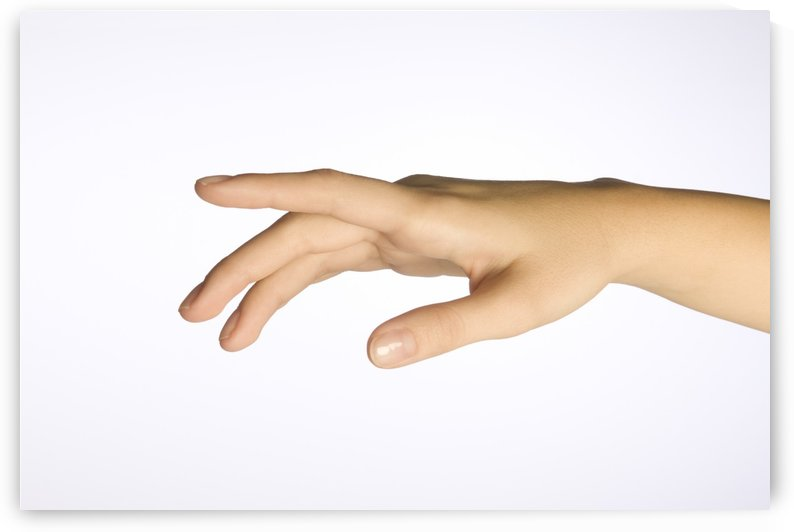 A Woman's Hand by PacificStock