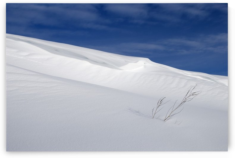Snow Covered Slope With Blue Sky by PacificStock