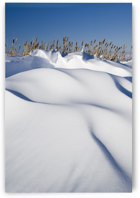Snow Drifts On A Hill by PacificStock