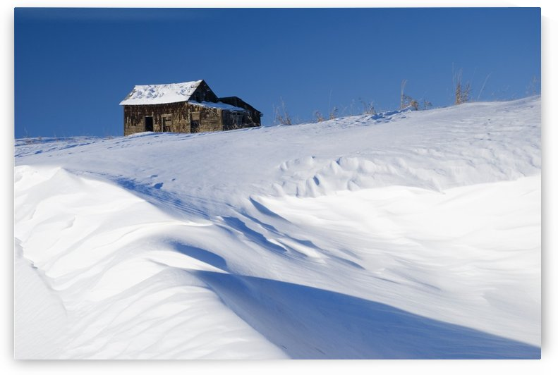 Alberta, Canada; Abandoned Farm Building Atop A Snowy Hill by PacificStock