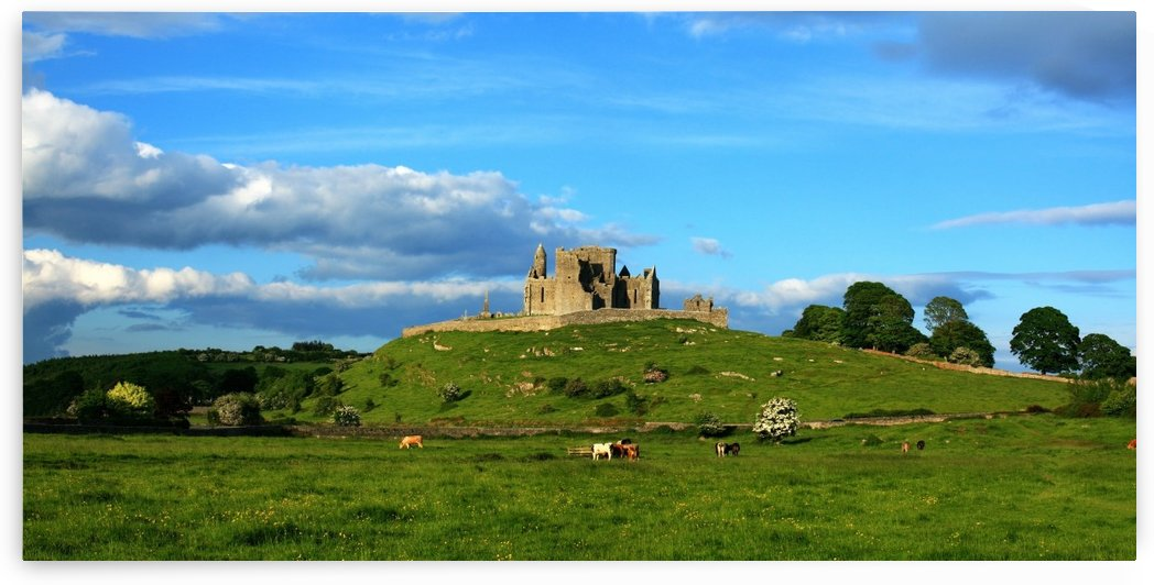 Rock Of Cashel, Cashel, County Tipperary, Ireland by PacificStock