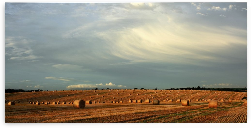 County Cork, Ireland, Hay Bales After The Harvest Near Mallow by PacificStock