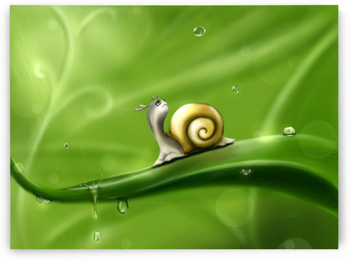 Snail by StockPhotography