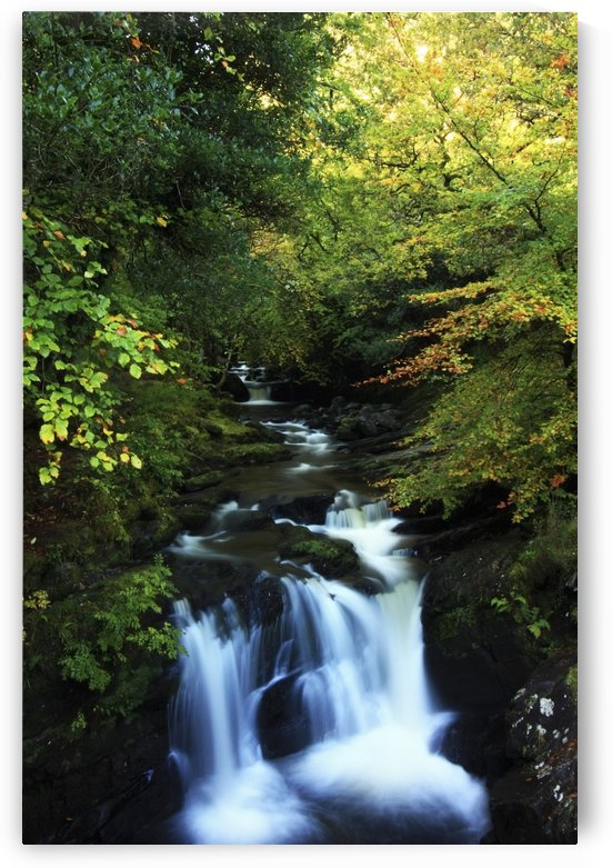 Torc Waterfall, Killarney National Park, County Kerry, Ireland by PacificStock