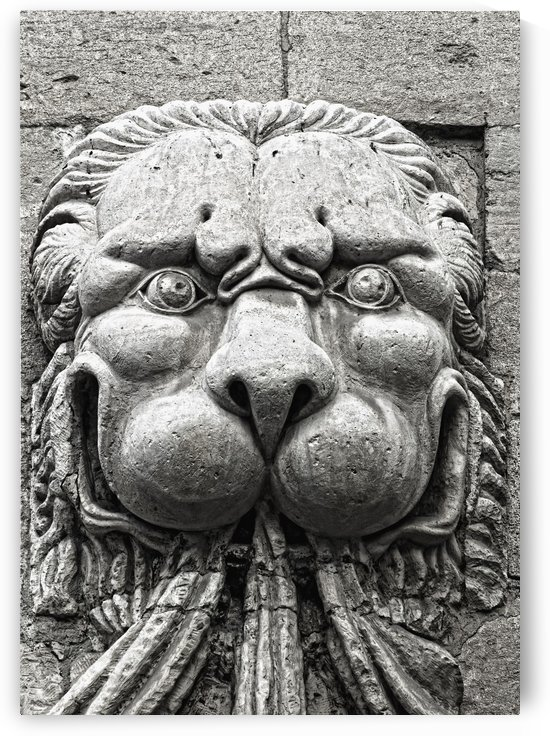 Pope's Palace, Avignon, Provence, France; Lion Sculpture by PacificStock