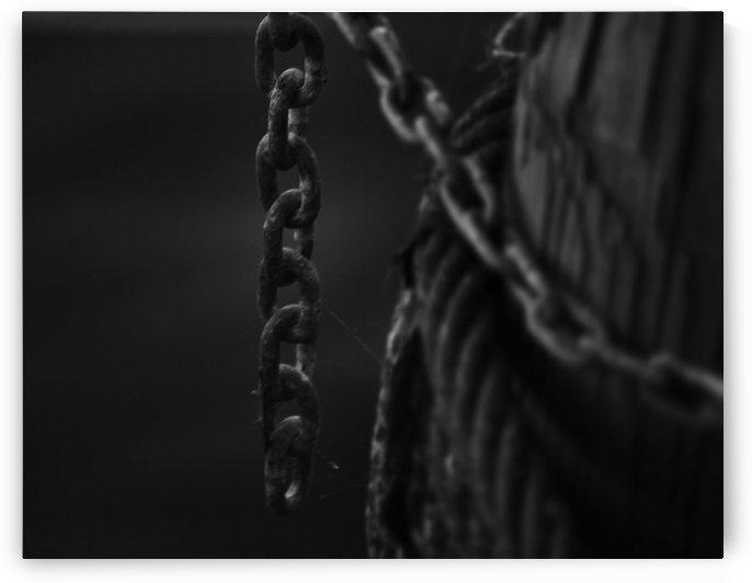 Single by Digitalu Photography