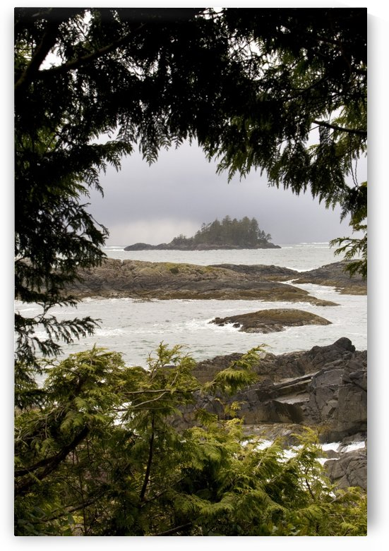 Coastal Scenery, Tofino, British Columbia, Canada by PacificStock