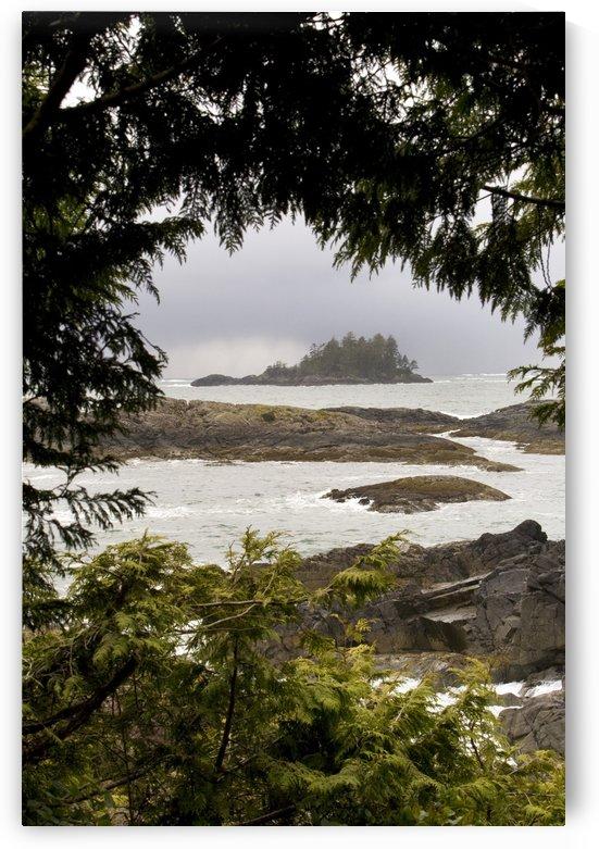 Coastal Scenery, Tofino, British Columbia, Canada by PacificStock