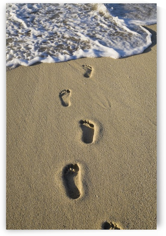 Footprints In The Sand by PacificStock